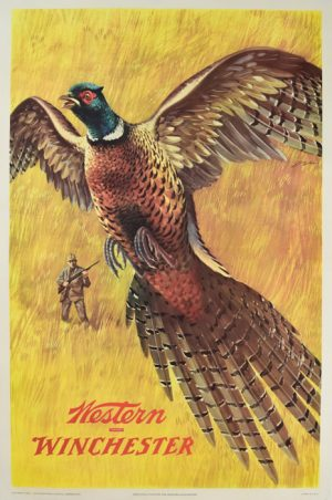 Western Winchester Pheasant