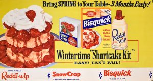 Wintertime Shortcake Kit